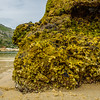 Portugal Arrabida Beach Photography 4 By Messagez com