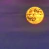 Purple Moon By Messagez.com
