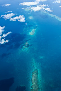 Above the Reef 1