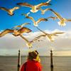 Lisbon Bird Whisperer Fine Art Photograhy 7 By Messagez com