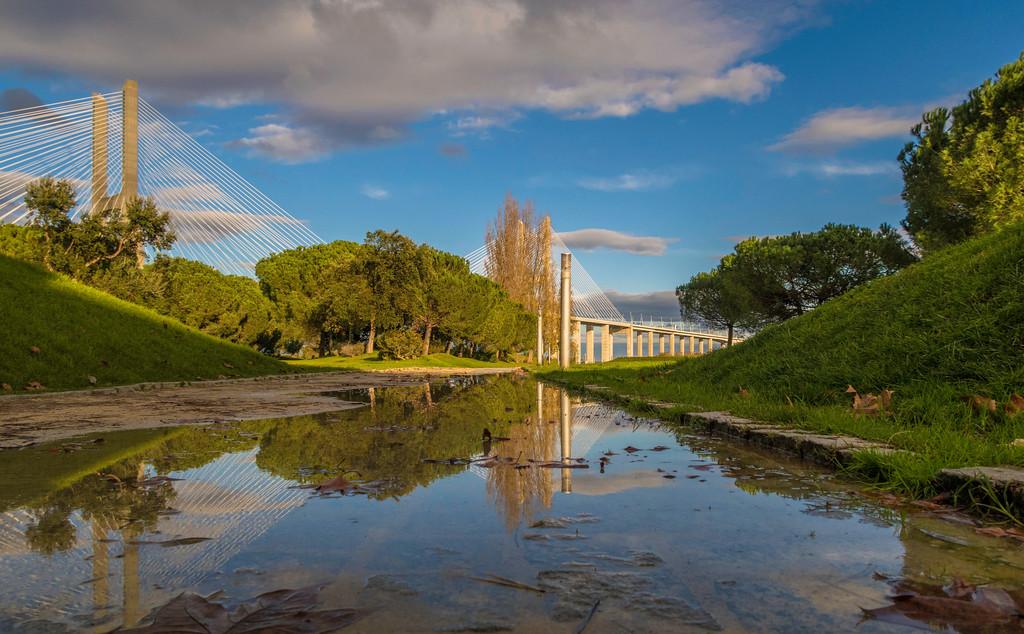 Expo Garden Reflection By Messagez com