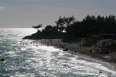 Beach Life in barbados