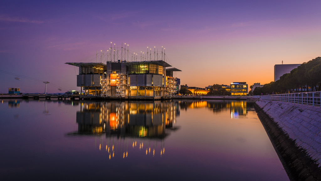 Original Lisbon Oceanarium at Sunset Photography 4 By Messagez com