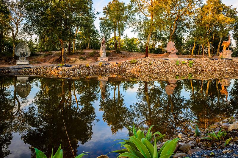 Buddha Eden Lake Reflection Photography By Messagez.com