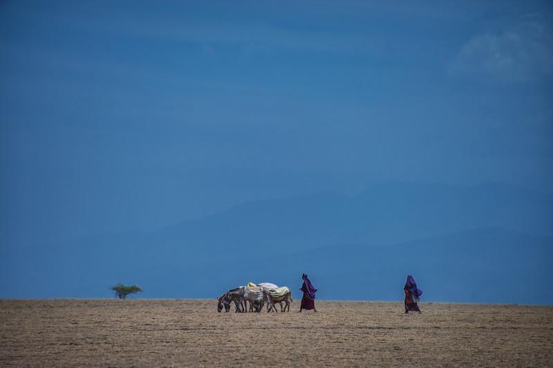 Masai Traveling Across Dried Up Riverbed, Amboseli, Kenya