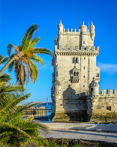 Lisbon Tower Palm Trees Photograph
