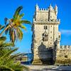 Lisbon Tower Palm Trees Photograph