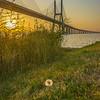 Best of Lisbon Bridge Sunrise Photography 7 By Messagez com