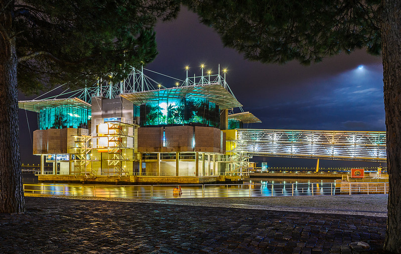 Portugal Oceanarium at Moonlight Fine Art Photography 2 By Messagez com
