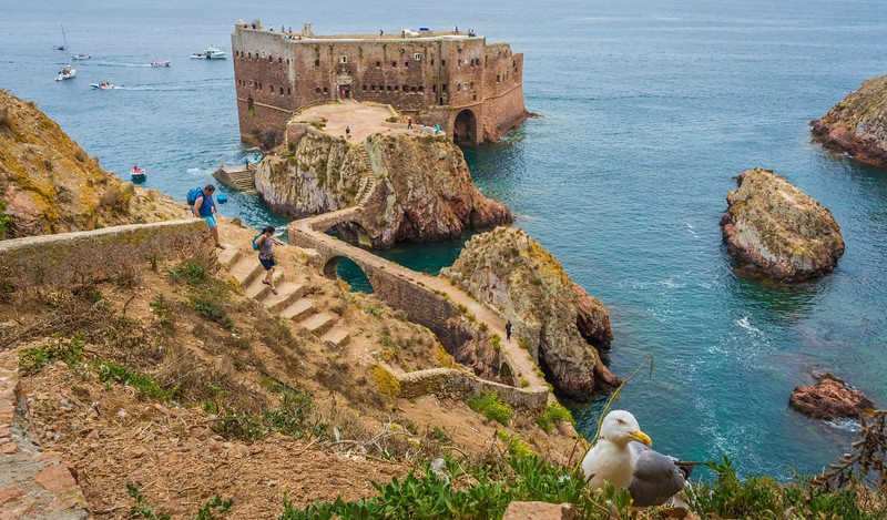 Road To The Berlenga Island Castle Portugal Photography 3 By Messagez com