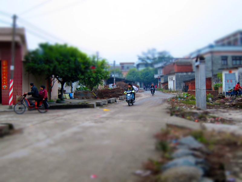 話俾你地知丫,右邊有幅約半個人高的紅磚牆地方,果度就係垃圾崗。村民就係拎d 垃圾倒去果度。