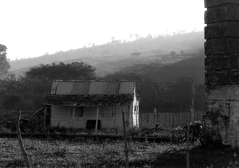 la-pastora-early-am2