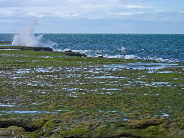 PV faro waves on shore P1000889