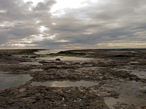 PV shore by faro P1000870