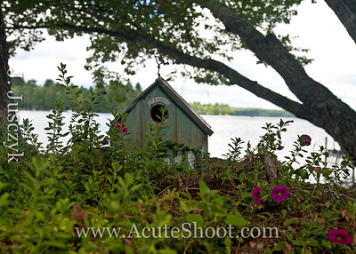 Fairy house by the lake.