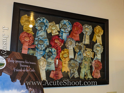 Old show ribbons.