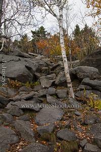 More rocks.