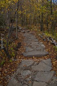 Pretty path.