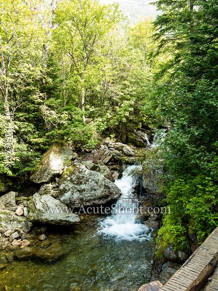 (c)2013Jusczyk-Mt-Washington-hike-3973.jpg