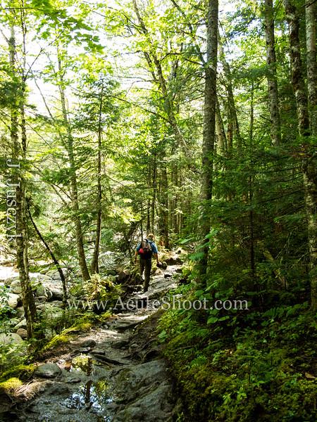 (c)2013Jusczyk-Mt-Washington-hike-3964.jpg