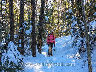 The trail was pretty nicely worn in at parts by snowshoers so we made it through with just mircospikes.