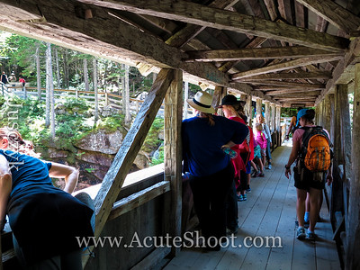 People on the covered bridge.