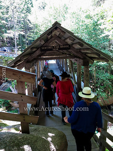 Covered Bridge to cross the gorge.