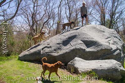 The Big Rock. April 2013