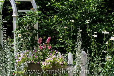 Janet's garden