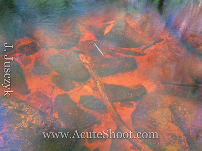 The water in Sin and Flesh Brook was very orange in parts.