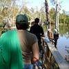 Honey Island Swamp Tour - 010