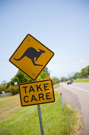 Did we mention Australia is known for their signs? luckily we didn't hit any kangaroos on the road..