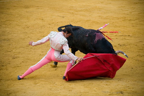 This matador woo'd the crowds. His father is supposed to be a very well known matador in spain.