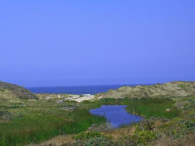Kehoe Beach trail, Point Reyes National Seashore