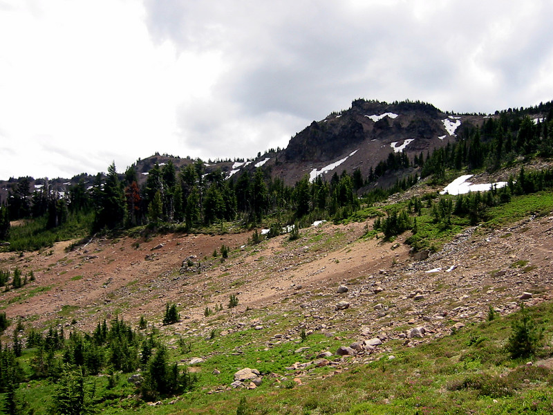 Looking towards the summit