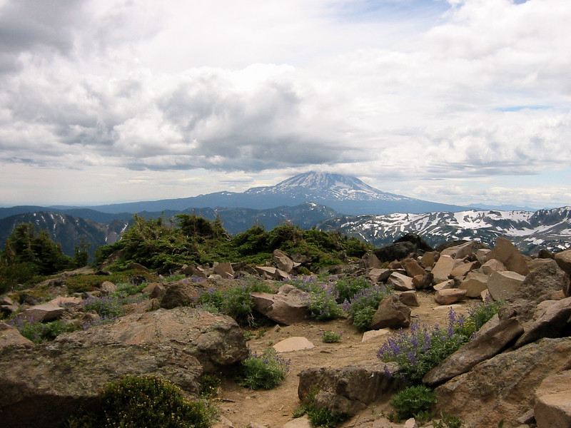 View of Mount Adams from the summit
