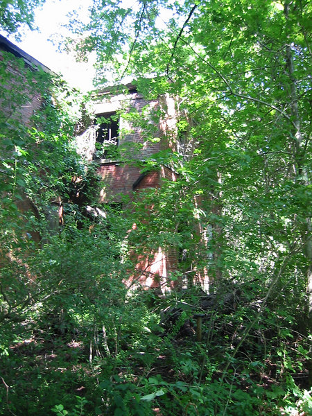 Most of the buildings on Peddock's Island are in ruin and covered with overgrowth