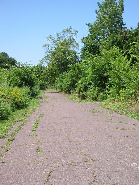 Road on Peddock's Island