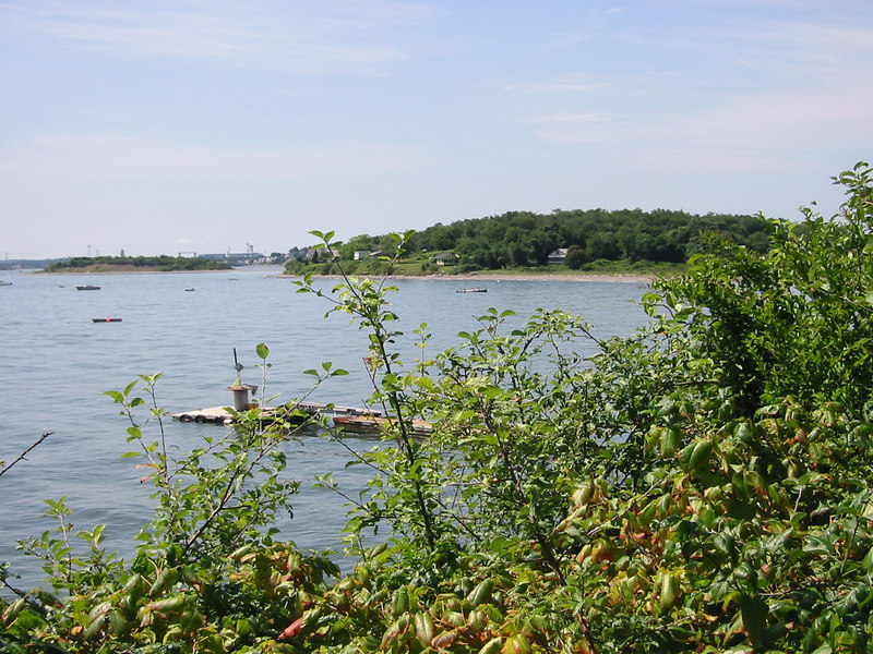 Shore of Peddock's Island