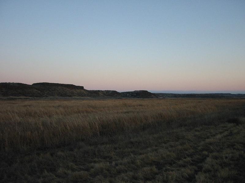 Manmade marsh