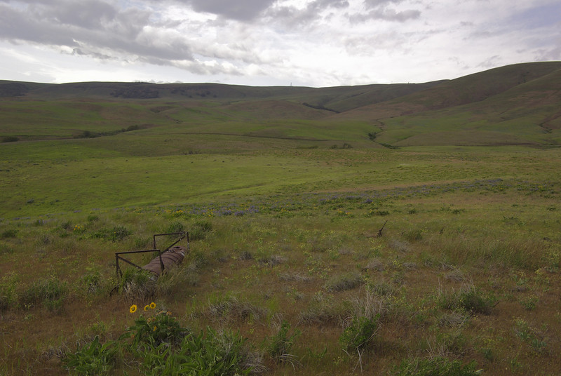 Dalles Mountain trail.  Trying for a cliche county shot, note the overturned watering trough.