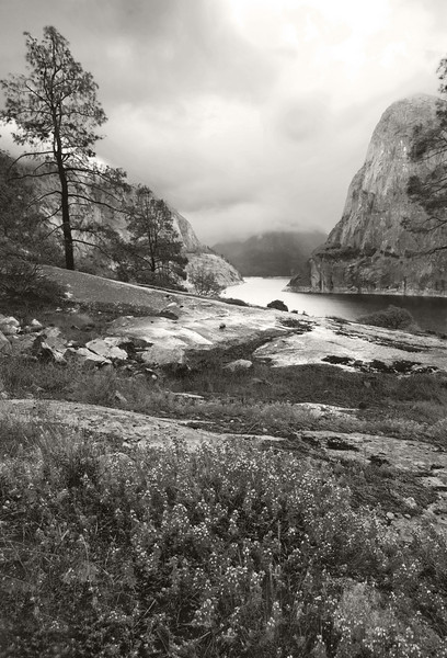 On the the trail looking up Hetch Hetchy.