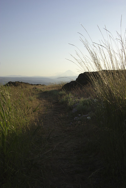 View down a trail west to Mount Hood from the top of  Horsethief Butte.