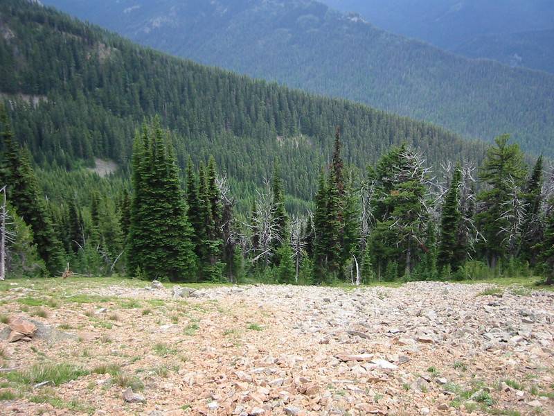 This was a typical view from the trail, steep all the way down.