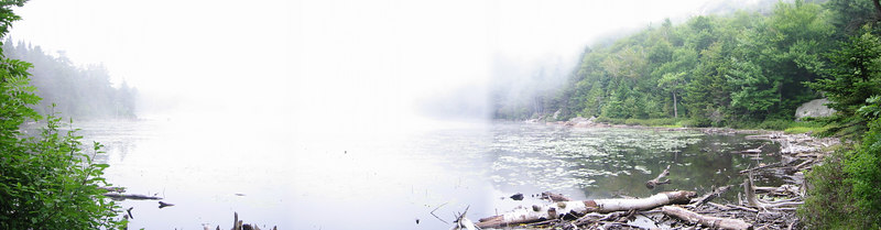 Panorama - Foggy Lake Solitude