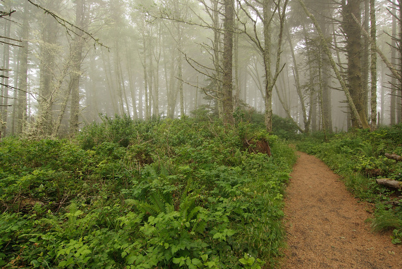 Cape Perpetua. St. Perpetua Trail.