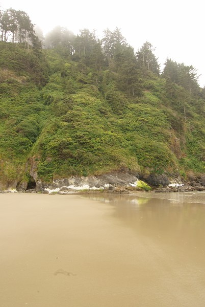 Hobbit Beach. Not petroglyphs, yet.