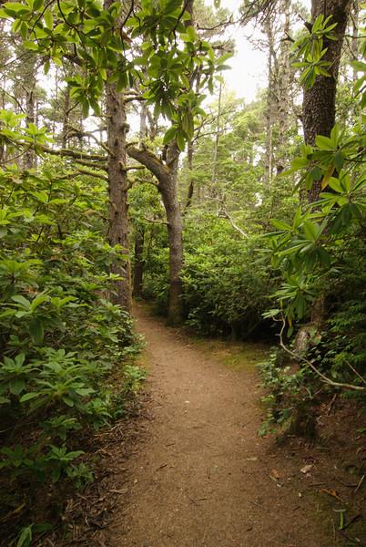 Hobbit Beach Trail.