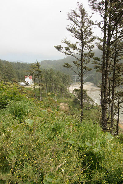 Heceta Head.  Looking down to the lightkeeper's house.