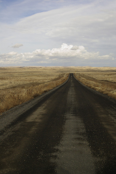 Road to Palouse Falls state park.